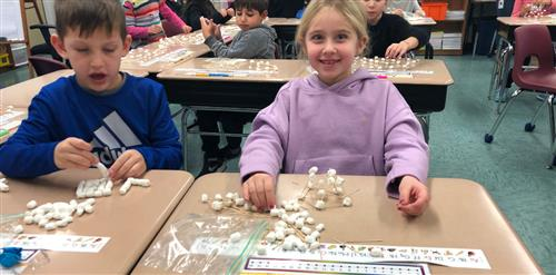 First grade students building a structure out of toothpicks and marshmallows.